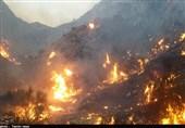 """کاهش 55 درصدی آتشسوزی در جنگلهای استان ایلام/ """"چوار"""" بیشترین آمار آتشسوزی را دارد"""