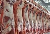 قیمت گوشت قرمز در قطب دامپروری کشور یکهتازی میکند / سایه سنگین واسطهها بر بازار