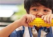 اندیشکده آمریکایی بروکینگز: حدود 14 میلیون کودک آمریکایی به غذای کافی دسترسی ندارند!