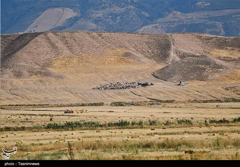 کاهش 40 درصدی نزولات آسمانی در لرستان/ تولید گندم دیم استان نصف شد