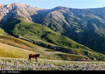 کوه سماموس بلندترین قله گیلان