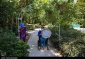 """گزارش// زندگی معلولان در """"بهشت تهران"""" + تصاویر"""