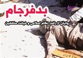 کتاب الکترونیکی «بدفرجام»|چند درصد از کشتهشدگان عملیات مرصاد آزادشده از زندان بودند؟