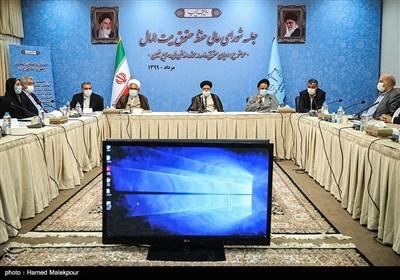 جلسه شورای عالی حفظ حقوق بیتالمال