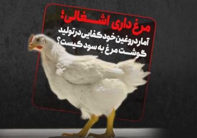 ویدئو کامنت | مرغ داری اشغالی؛ آمار دورغین خودکفایی در تولید گوشت مرغ به سود کیست؟