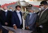 ورزشگاه 6 هزار نفری شیراز تا دهه فجر به بهره برداری میرسد