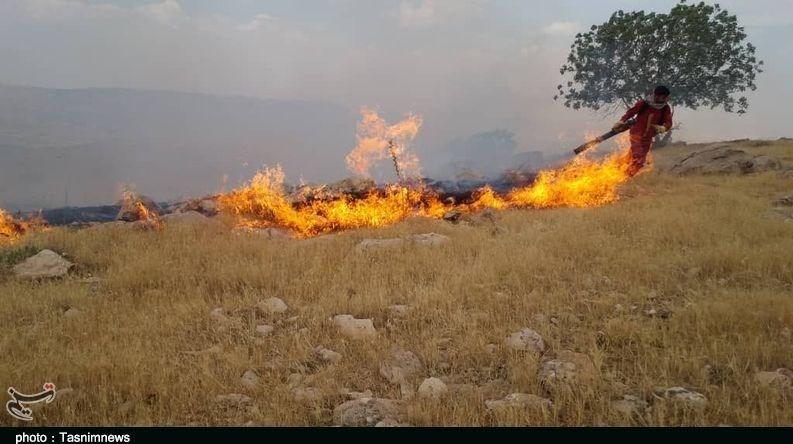 گزارش| 72 ساعت آتشسوزی در جنگلهای کوهدشت؛ خاکسترنشینی بلوطستان