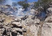 آتشسوزی جنگلهای کوهدشت پس از 3 روز مهار شد