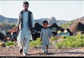 سیستان و بلوچستان 1900 خانوار عشایری دلگان تا پایان سال از شبکه آب شرب بهرهمند میشوند