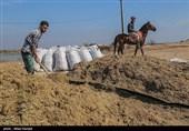 تهران| معاون استاندار تهران بر استفاده از ظرفیت کشاورزی و صنعتی در ری تاکید کرد