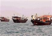 صیادان استان بوشهر 620 تن میگو در آبهای خلیج فارس صید کردند