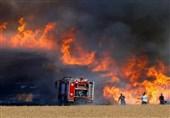 رژیم اسرائیل|بالنهای آتشزایی که خواب از چشمان صهیونیستها ربوده است