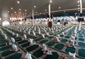 بسیج سازندگی بوشهر توزیع بیش از 4000 بسته معیشتی میان نیازمندان را آغاز کرد