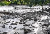 آخرین وضعیت خسارات سیل در استان کرمان؛ خسارت 67 میلیاردی سیل در رابر