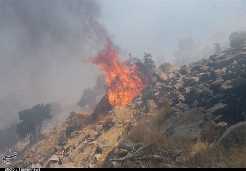 آتش به جان جنگلهای دنا افتاد