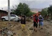 معاون بنیاد مسکن کشور: 160 هزار واحد مسکونی در 28 استان کشور براثر بارندگی سال گذشته خسارت دید