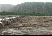 مدیرعامل جمعیت هلالاحمر استان کرمانشاه: امدادرسانی به 324 فرد گرفتار در سیل و آبگرفتگی هرسین انجام شده است