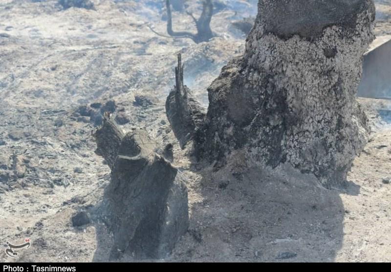 کهگیلویه و بویراحمد| آتش همچنان در « جنگلهای لنده» زبانه میکشد