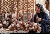 درصد معدودی از عشایرآذربایجان غربی زیر پوشش بیمه قرار دارند
