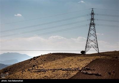دامنه رشته کوه گرین، منطقه کوهستانی کهمان، روستای هنام و حومه این شهرستان