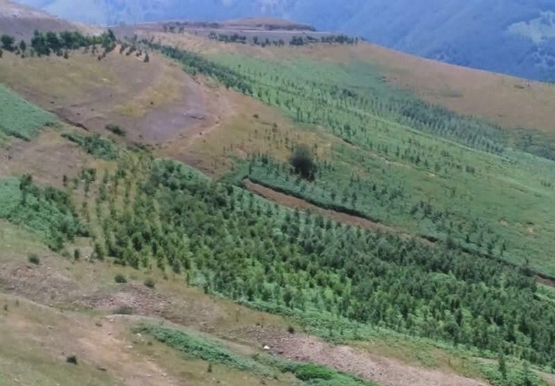 پروژههای آبخیزداری استان گیلان 92 درصد پیشرفت فیزیکی دارد