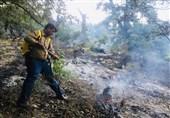 جنگلهای کوه سفید لنده در آتش میسوزد