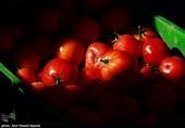 ایران سے سبزیوں کی درآمد کے باوجود، ٹماٹر کی قیمت 160-200 روپے برقرار