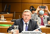 اولیانوف: هیاتهای مذاکره کننده آماده ماندن در وین تا رسیدن به توافق هستند