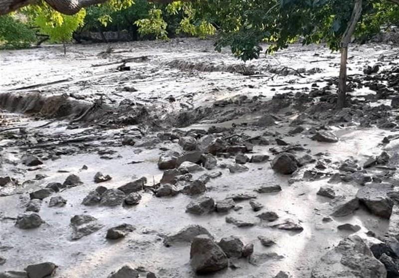 گلایه کشاورزان خراسان جنوبی از گل و لای باقیمانده در مزارع سه هفته بعد از سیل