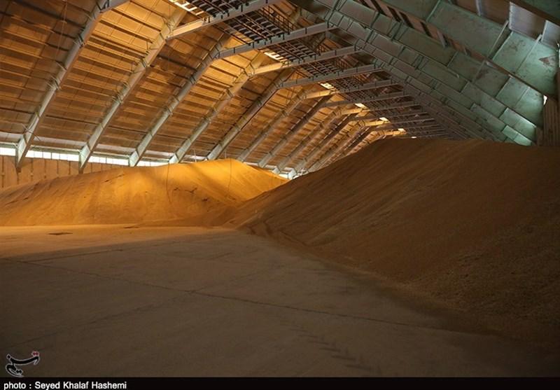 حمل گندم در اردستان بدون مجوز جهاد کشاورزی قاچاق و محموله توقیف میشود