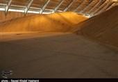 گندم مورد نیاز استان تهران تا پایان سال ذخیره شد