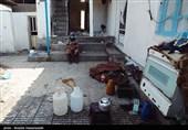 امدادرسانی و توزیع بستههای مهر تحصیلی و معیشتی در مناطق زلزلهزده رامیان + فیلم