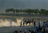 هفته هفتم کورس اسبدوانی پاییزه کشور فردا در آققلا برگزار میشود