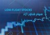 اصلاح مصوبه افزایش سهم شناور آزاد شرکتهای تابع دستگاههای اجرایی در بازار سرمایه