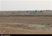 گزارش| بیمهری مسئولان به مسکن مهر بندر امام خمینی(ره) / جولان سارقان در شهرک مسکونی+ فیلم