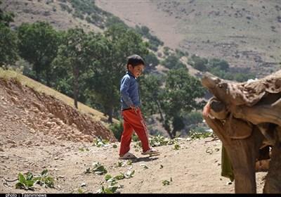 روایت تسنیم از روستایی تشنه در کنار سد تنگ سرخ /گنجگان از هرگونه امکاناتی محروم است