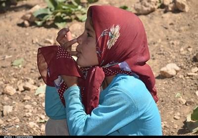 روایت تسنیم از اجرای سدی که خدمات رسانی به ۱۴ روستا در کهگیلویه و بویراحمد را متوقف کرد
