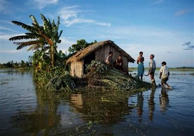 نتایج یک تحقیق درباره نقش ثروت در تخریب محیط زیست
