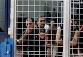 هشدار مقاومت به رژیم صهیونیستی درباره پیامدهای به خطر افتادن جان اسیران فلسطینی