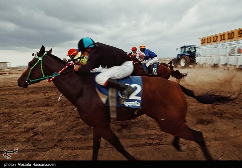 129 اسب در هفته هشتم کورس زمستانه گنبدکاووس رقابت میکنند