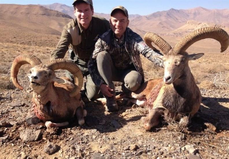 سازمان محیط زیست , شکارفروشی , شکار ,