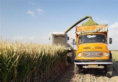 """کمبود ماشین آلات؛ دسترنج کشاورزان """"دره شهری"""" را خشکاند"""