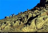 سمنان  شکوه بلندترین کوه میامی به روایت تصاویر
