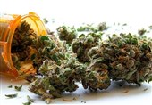 Chemical in Cannabis Could Help Prevent, Treat COVID-19 Complications