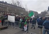 تظاهرات الجزایریهای مقیم فرانسه علیه دولت الجزیره