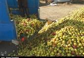 """وعدههای مسئولان آذربایجانغربی کنار جادهها انباشته شد/ قیمت """"سیب زیردرختی"""" کمتر از 800تومان"""