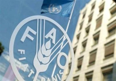 حمایت فائو از ایران برای تقویت تأمین مالی اقدامات اقلیمی