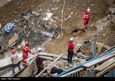 کشف ۲ جسد از محل حادثه آوار در خیابان فلاح و پایان عملیات جستوجو