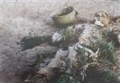 تصویر دفاع مقدس| خواب با بوی باروت گلوله و آتش دشمن