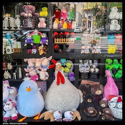 عروسک فروشی
